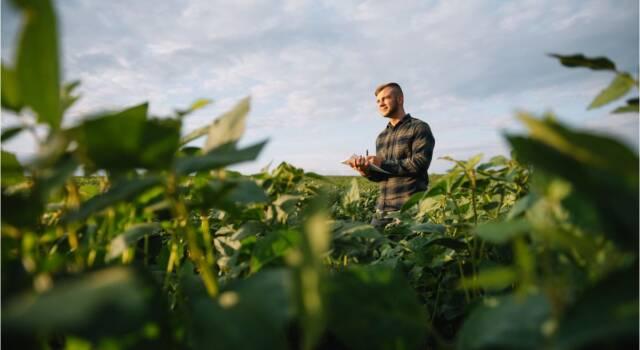 Come si calcola l'indennizzo per l'espropriazione dei terreni agricoli?