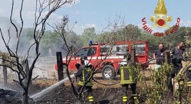 Aereo da turismo precipita in Calabria, due morti (FOTO)