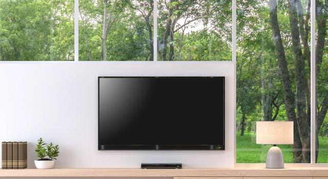 Una TV per il giardino: interessante novità targata Samsung